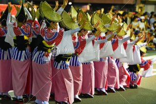 徳島 阿呆連 両国演舞場 平成29年