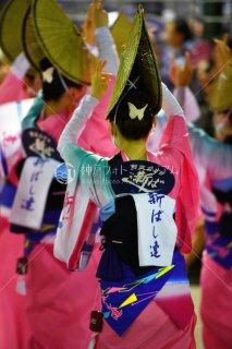 徳島 新ばし連 両国演舞場 平成29年