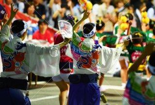 徳島 すいきょう連 両国演舞場 平成29年