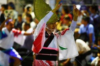 徳島 浮助連 両国演舞場 平成29年