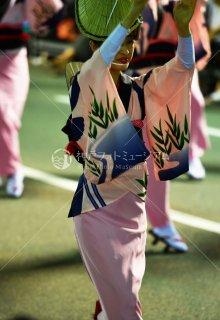 徳島 平和連 両国演舞場 平成29年