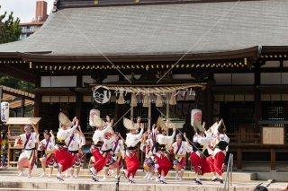 ぐる〜ぷ颯 弓弦羽神社花びらまつり 平成三十年
