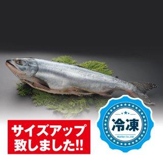 23_新巻鮭