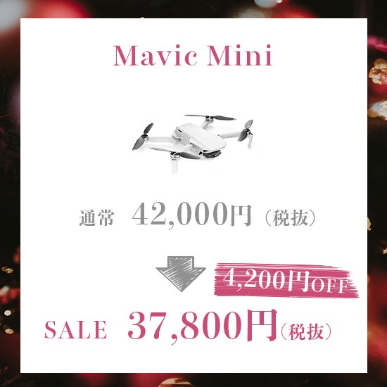 Mavic Mini Fly More Combo【お取り寄せ】