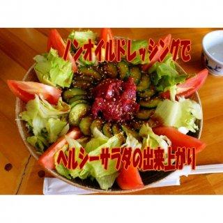 馬刺し 馬肉 熊本 桜サラダ専用 馬刺し100g