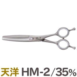 天洋 HM-2 カット率35%