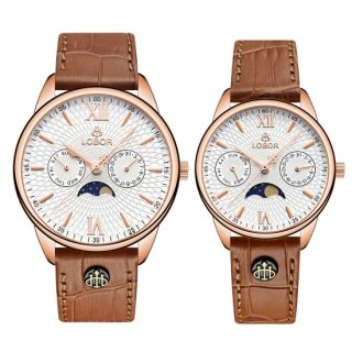 MERIDIAN PERIHELION BROWN PAIR