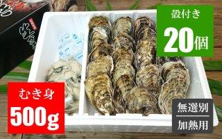 広島牡蠣 むき身500g/殻付き20個セット