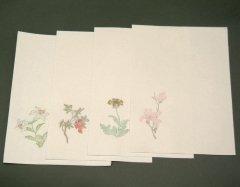 木版 印箋 花卉図 24.5×33.5mm 4柄20枚入 <在庫限り>