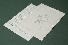 中国木版便箋  #03-5 10枚 縦横罫下敷付き