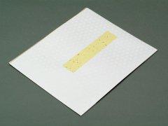 多当紙 大色紙用 白小紋