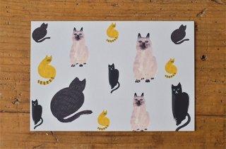 ポストカード「ネコだらけ」