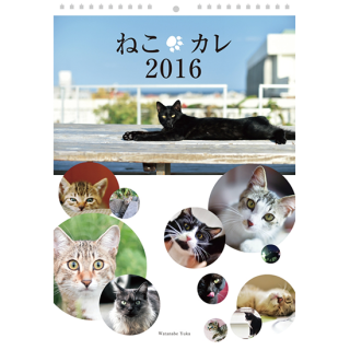<img class='new_mark_img1' src='https://img.shop-pro.jp/img/new/icons47.gif' style='border:none;display:inline;margin:0px;padding:0px;width:auto;' />ねこカレ2016