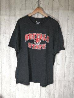 chmpion チャンピオン Tシャツ XL BUFFALO STATE バッファロー州 グレー