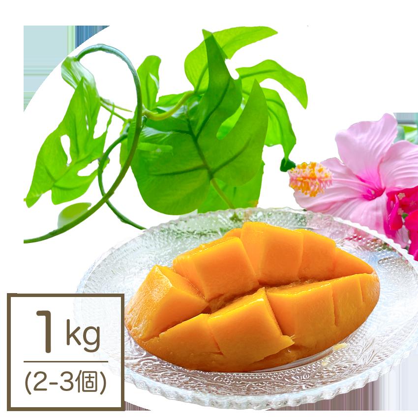【予約販売】【送料無料/家庭用】完熟マンゴー1kg(2-3個)
