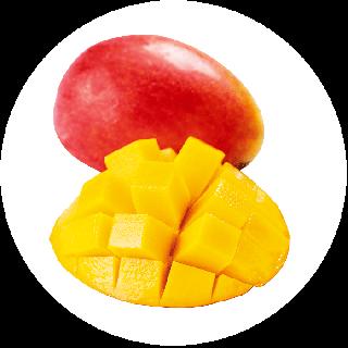 【送料無料/家庭用】冷凍完熟マンゴー1kg(皮付き半身真空パック)