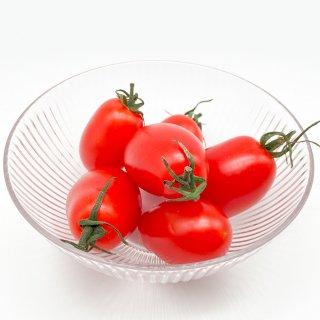 ミニトマト(九州産)農薬・化学肥料・除草剤不使用