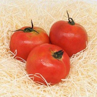 トマト 九州産(農薬、化学肥料不使用)