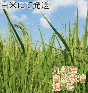 九州産 自然栽培のお米(旭一号) 1kg