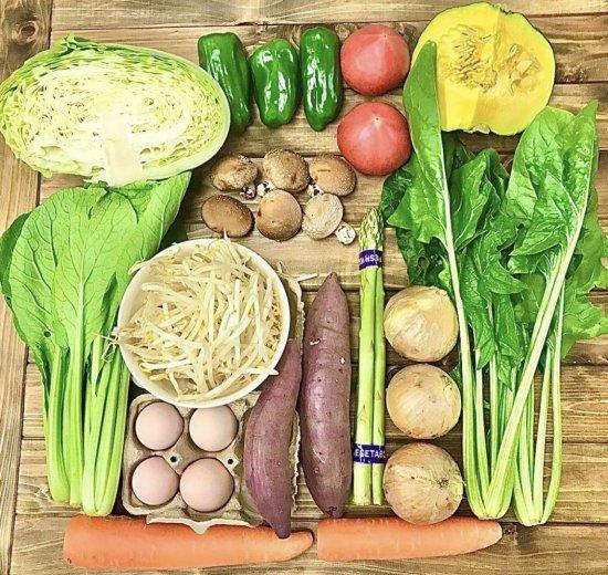 お野菜セットB