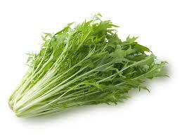 『選べるセット専用』水菜 九州産 農薬、化学肥料不使用