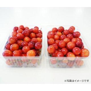 佐藤錦 バラMLミックス 450g×2
