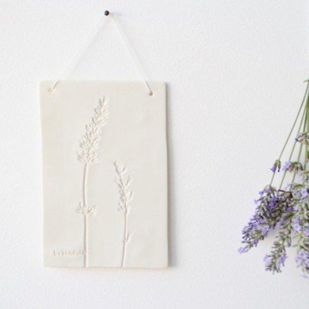 Otchipotchi<br>herbarium plate lavender