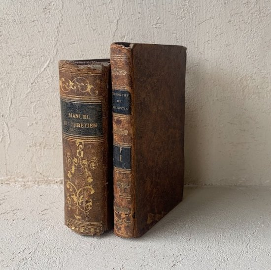 France antique book.a<img class='new_mark_img2' src='//img.shop-pro.jp/img/new/icons47.gif' style='border:none;display:inline;margin:0px;padding:0px;width:auto;' />