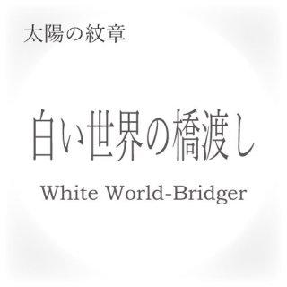 マヤンエッセンス 白い世界の橋渡し