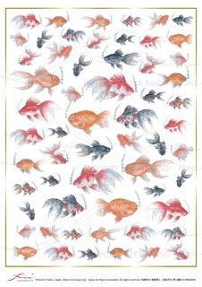 デコパージュ用アートペーパー「FUNE」ATHK02001 金魚