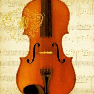 ペーパーナプキン(33)ppd:(5枚)Concerto Violino-PP140