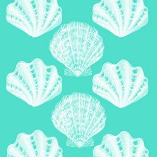 ペーパーナプキン(33)ppd:(5枚)Riviera Shells aqua-PP164