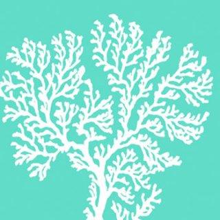 ペーパーナプキン(33)ppd:(5枚)Riviera Coral aqua-PP165