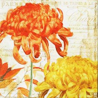 ペーパーナプキン(33)ti-flair:(5枚)Chrysanthemes orange yellow-TI74