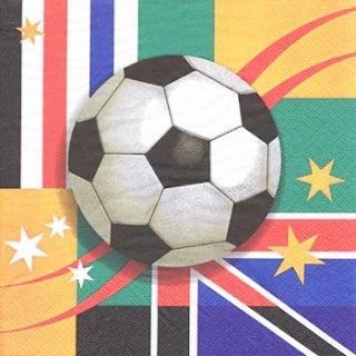 ペーパーナプキン(33)ti-flair:(5枚)World Cup-TI89