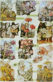 スクラップシート:花の妖精(フラワーフェアリー)1