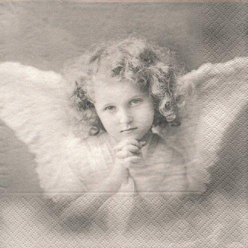 ペーパーナプキン(33)Sagen:(5枚)【s-19】Sweet angels