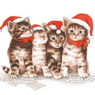 ペーパーナプキン(25)AMB:(5枚)SINGING CATS-AM17(25)
