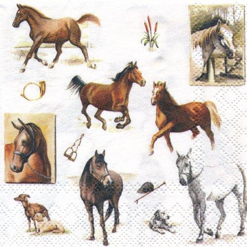 ペーパーナプキン(25)AMB:(5枚)HORSE WORLD-AM42(25)
