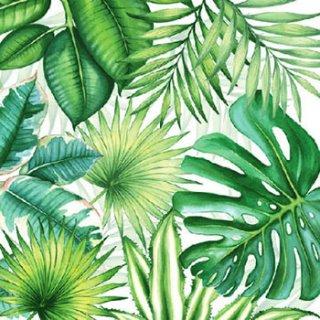 ペーパーナプキン(25)AMB:(5枚)Tropical Leaves-AM59(25)