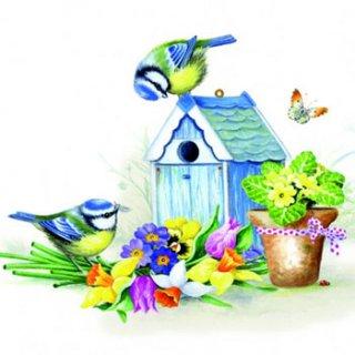 ペーパーナプキン(33)AMB:(5枚)It Is Springtime-AM345