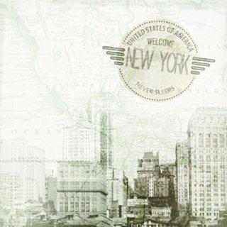 ペーパーナプキン(33)AMB:(5枚)New York-AM351