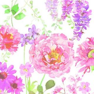 ペーパーナプキン(33)AMB:(5枚)Pink Roses White-AM355