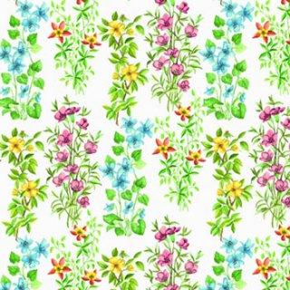 ペーパーナプキン(33)AMB:(5枚)Field Flowers-AM383
