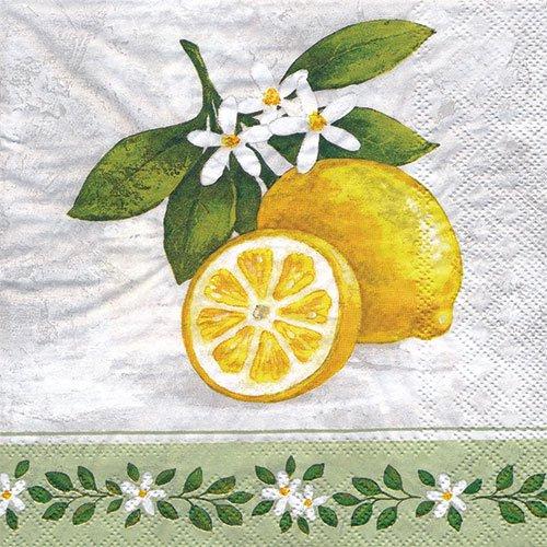 ペーパーナプキン(33)AMB:(5枚)Lemon Branch-AM384