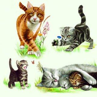 ペーパーナプキン(33)AMB:(5枚)Cats Family-AM393