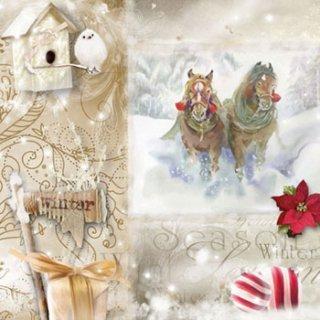 ペーパーナプキン(33)AMB:(5枚)Christmas Season-AM403