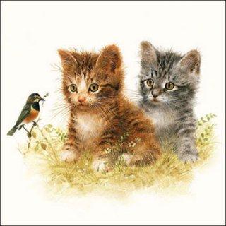 ペーパーナプキン(33)AMB:(5枚)Kitten Friend-AM448