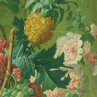 ペーパーナプキン(33)AMB:(5枚)Fruit & Flowers -AM540