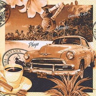 ペーパーナプキン(33)home:(5枚)Havana-HO111